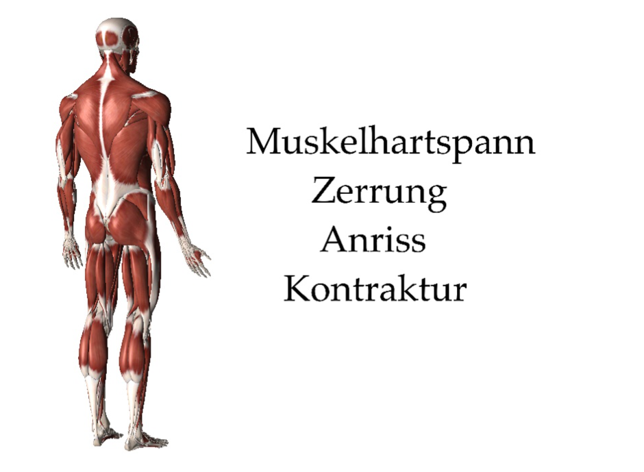 therapie muskel zerrung riss verspannung